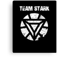 The Stark Team Canvas Print