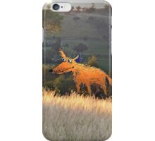 """""""Fox on the prowl"""" iPhone Case/Skin"""