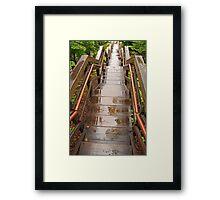 Wet Steps Framed Print