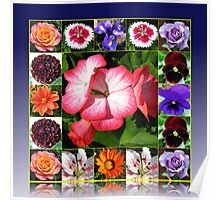 Sunshine and Showers - Summer Flowers Collage Poster