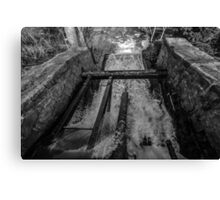 Rush(Black & White)  Canvas Print