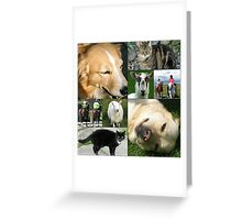 All Creatures Collage Greeting Card