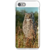 Great Horned Owl waiting for the sun to set iPhone Case/Skin