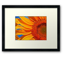 Vibrant Sunflower Framed Print