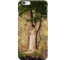 waiting for a wizard iPhone Case/Skin