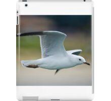 Flight Time iPad Case/Skin