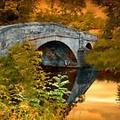 The Bridge by Irene  Burdell
