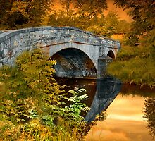 The Bridge by Irene  Burdell