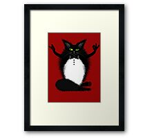 ZIGGY THE CAT Framed Print