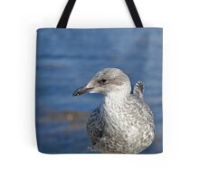A Seagull's Life Tote Bag