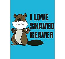 shaved beaver Photographic Print