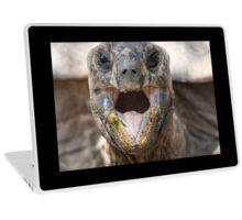turtle eating Laptop Skin