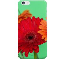 Gerberas in vase on a green background iPhone Case/Skin