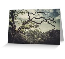 The tree and the mountains Greeting Card
