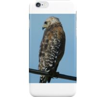 Hawk iPhone Case/Skin
