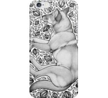 Dingo Dreaming iPhone Case/Skin