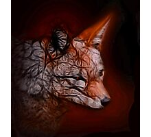 Fox Spirit Photographic Print
