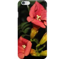 Tropi-cool iPhone Case/Skin