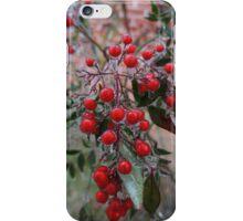 Frozen Holly iPhone Case/Skin