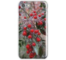 Frozen Holly iPhone Case/Skin