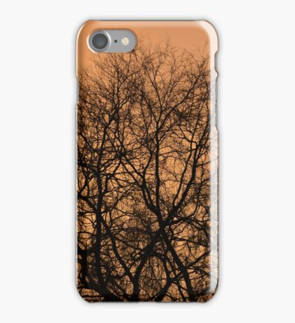 Sunset through bare branches iPhone Case/Skin