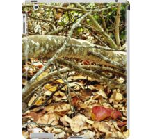 Fallen Grape Leaf Tree Branch iPad Case/Skin