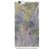 Cat Tails iPhone Case/Skin