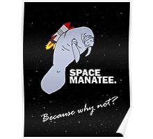 Space Manatee Poster