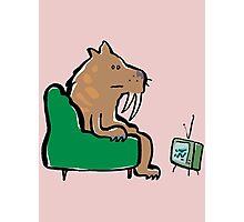 watching TV Photographic Print