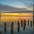 San Francisco Oakland Bay Bridge by TonyCrehan