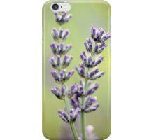 Vintage Lavender iPhone Case/Skin