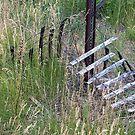 Broken Fence by David Schroeder