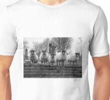 Five go Wild In Strathaven Unisex T-Shirt