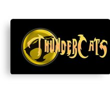 Thundercats show Canvas Print