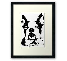 Boston Terrier Who Farted? Framed Print