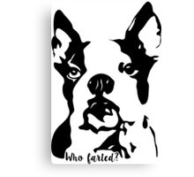 Boston Terrier Who Farted? Canvas Print