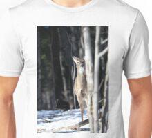 Curious Deer Unisex T-Shirt
