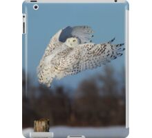 Hindsight iPad Case/Skin