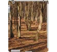 WOOD SHADOWS iPad Case/Skin