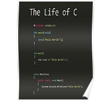 The Life of C Poster