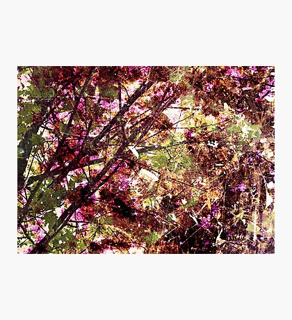 Cool, unique modern nature tree abstract digital art design Photographic Print