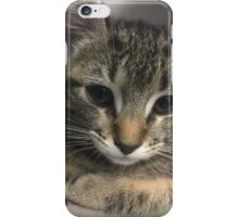 Cute Little Kitty iPhone Case/Skin