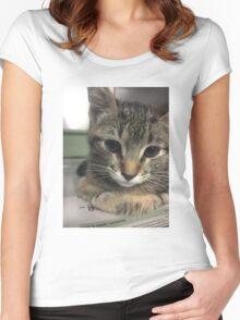 Cute Little Kitty Women's Fitted Scoop T-Shirt