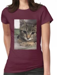 Cute Little Kitty Womens Fitted T-Shirt