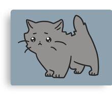 Sad Blue Persian Kitten Canvas Print