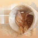 Mellow marmalade moment by Christina Brundage