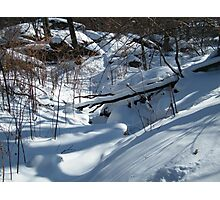 Central Park in Snow Photographic Print