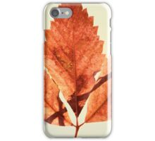 Autumn Leaves Retro Look iPhone Case/Skin