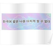한국어 팝은 나를 다치게 할 수 없다 - Korean Pop can never hurt me Poster