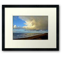 Five gulls came flying along the coast Framed Print